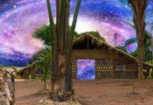 Indigenous Ayahuasca