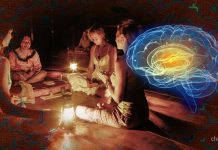 ayahuasca effects brain