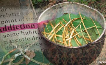 Ayahuasca Addiction Therapy