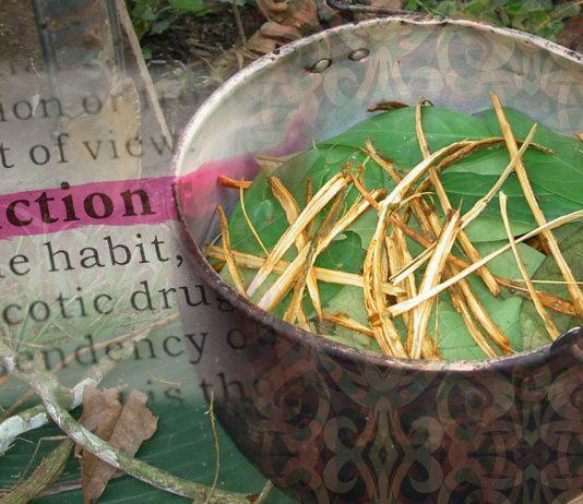 Ayahuasca Addiction Therapy