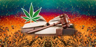 Legalizing Psychedelics
