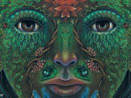 psychedelic hallucinations