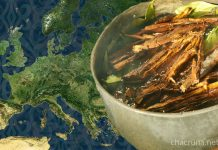 ayahuasca in Europe