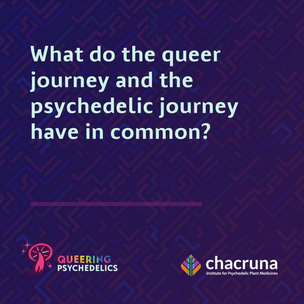 What do the queer journey and the psychedelic journey have in common?